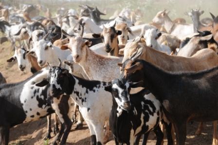 Omorate, Ethiopia